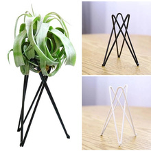Garden-Ornaments Pots-Stand Table Tillandsia Art-Display Air-Plant-Holder Iron Office-Flower