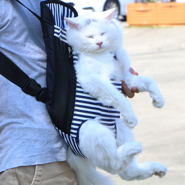 Pet Outdoor Carrier Backpack  2