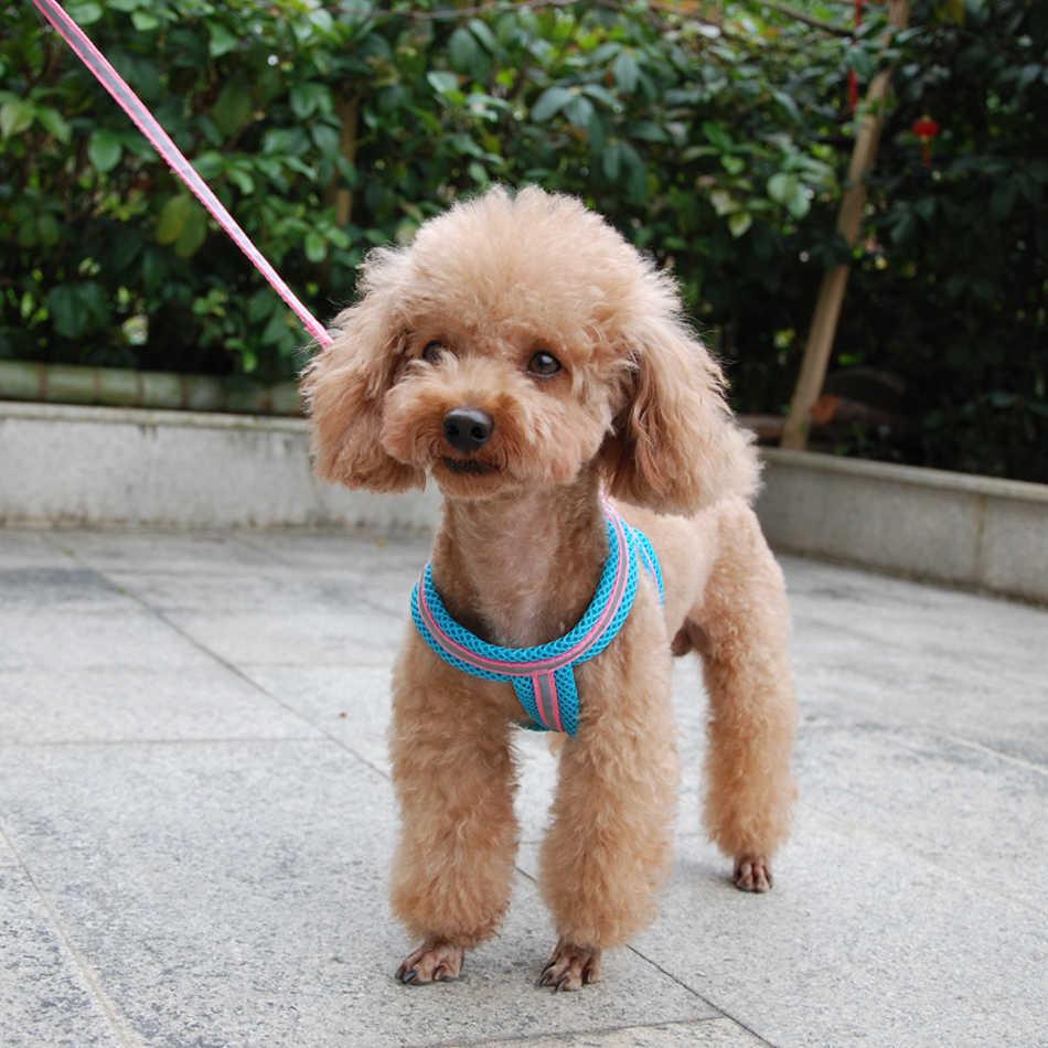 Hund Katze Harness Weste Reflektierende Atmungsaktive Mesh Pet Produkte Hunde Leine Harness Einstellbare Kragen Welpen Kleine Hund Nacht Zu Fuß