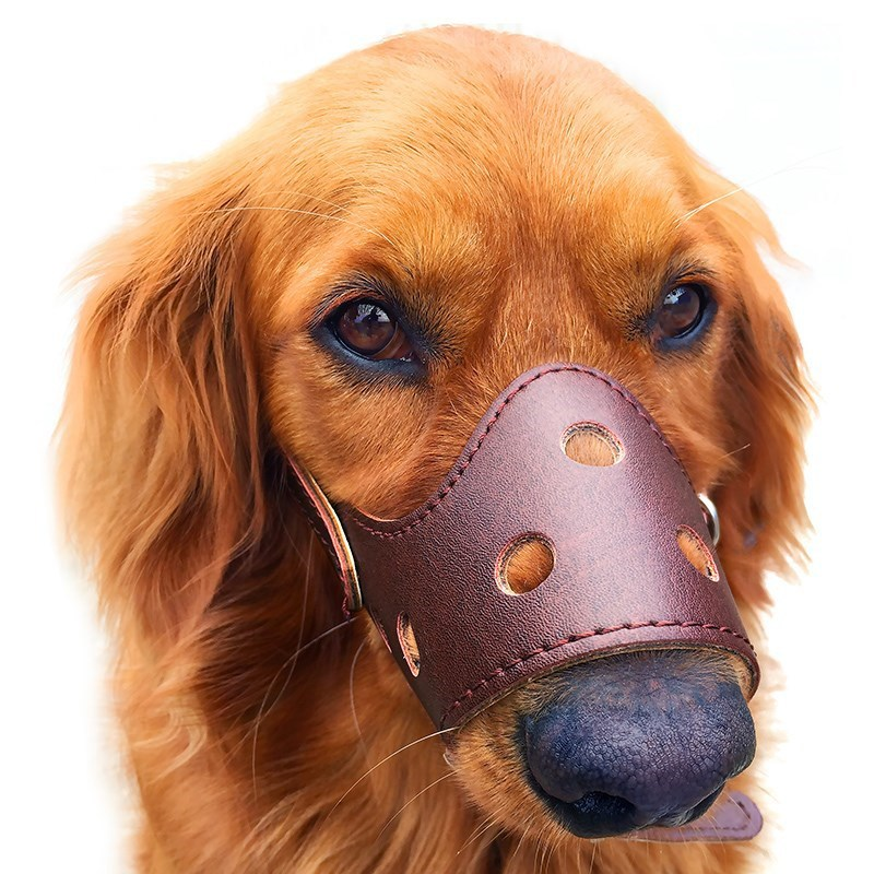 Dog Face Mask Mouth Case Medium Bound Rest Assured Design Easy To Use Practical Anti-Chaos Jian Shi Mouth Case Applicable Comfor