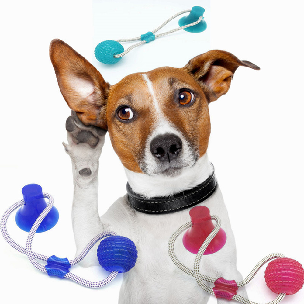 40*10CM Suction Cup Dog Toys TPR Ball Pet Toothbrush Chewing Rubber Dog Toys Elastic Ropes Match Push Pull Game for Dogs Ball image
