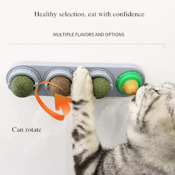 Natural catnip pet toy cat toy interactive mouse kitten toys cats playing cleaning dental toy cat toys pet supplies red legged mouse pet cat toy multicolored