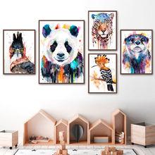 Красочные лев тигр лиса попугай панда дети стены искусства холст