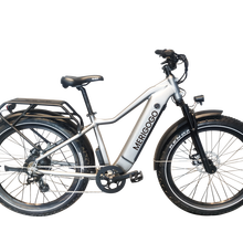 Design de moda bicicleta elétrica pneu gordo mountain bike 750w fat mountain