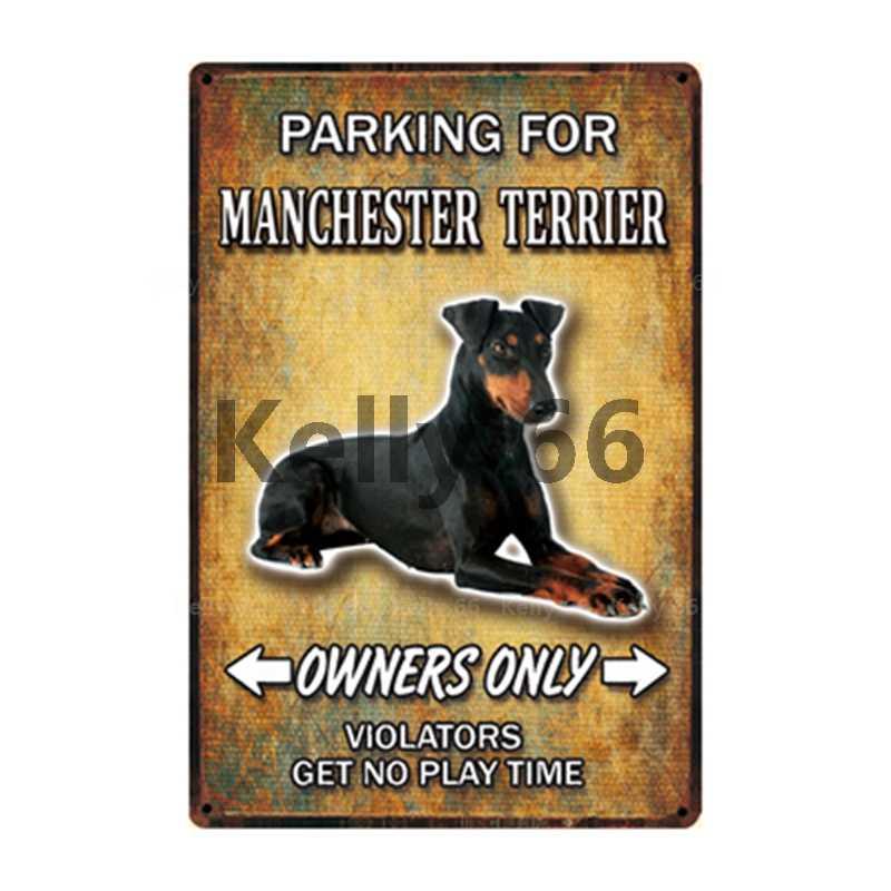 [Kelly66] Pet Cane Collie Manchester Silky Terrier Scozzese di Latta di Metallo Segno Complementi Arredo Casa Bar Arte Della Parete Della Pittura 20*30 CENTIMETRI Formato Dy122