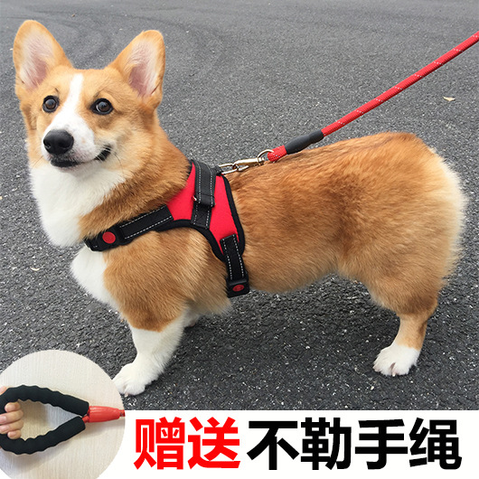 Dog Teddy Lanyard In Type Dog Lanyard Sub-Traction Law Bucket Corgi Vest Small Dogs Retractable Chest Chinlon