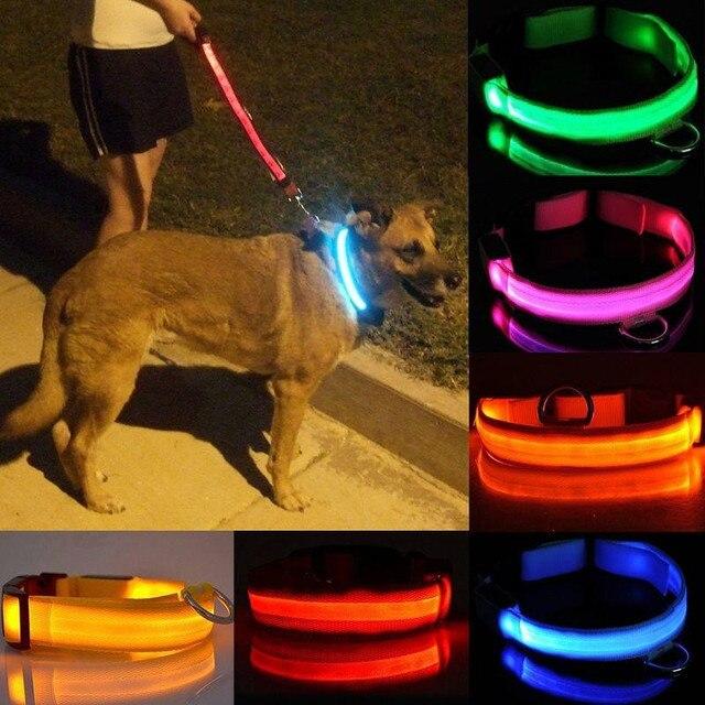 Glow In The Dark Dog Leash 2