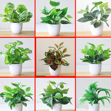 Potted-Ornaments Bonsai Tree-Pot Plants Garden-Decor Fake-Flowers Hotel Small New