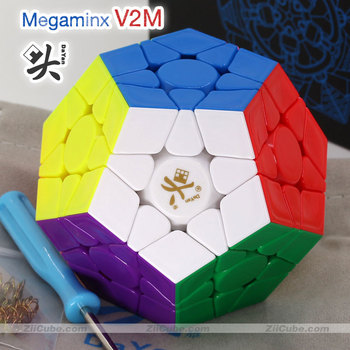 Dayan Magnetic Megamin Cube 3x3 V2M Magnet Dodecahedron Stickerless Megaminxeds Professional Decompression toy Twist Wisdom Game image