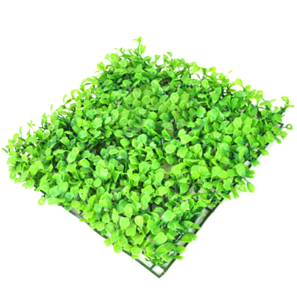 Aquarium Plant Seed Easy Growing Aquarium Water Plant Grass Seed Fish Tank Lawn Decor Accessories(China)
