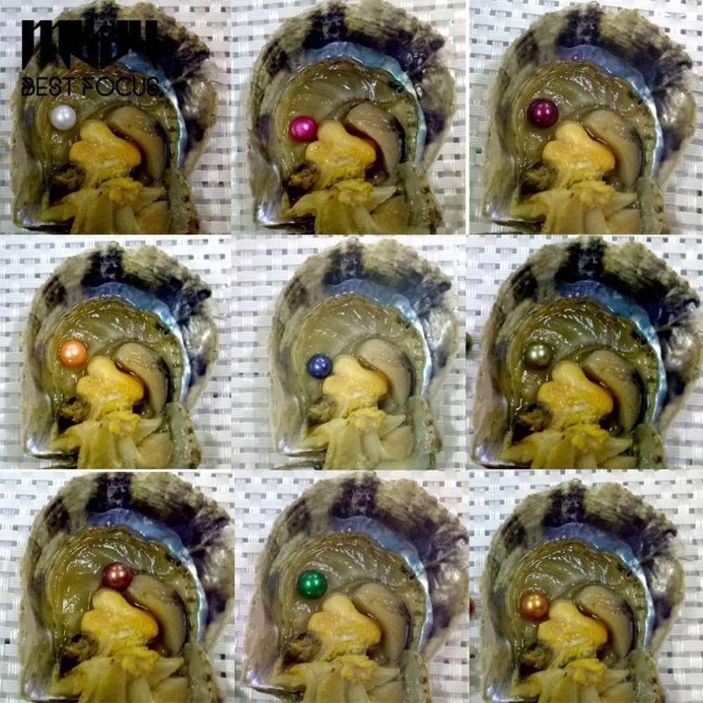 6pcs פניני בואקום-חבילה פניני צדפה שבלול מעטפת מים מתוקים פרל מסתורי הפתעה מתנה לחברים Dropshipping