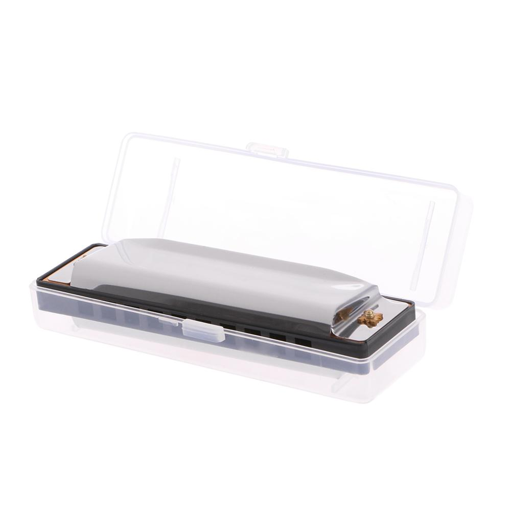 Blues Harmonica 10 Holes Key Of C Musical Instrument Stainless Steel With Case