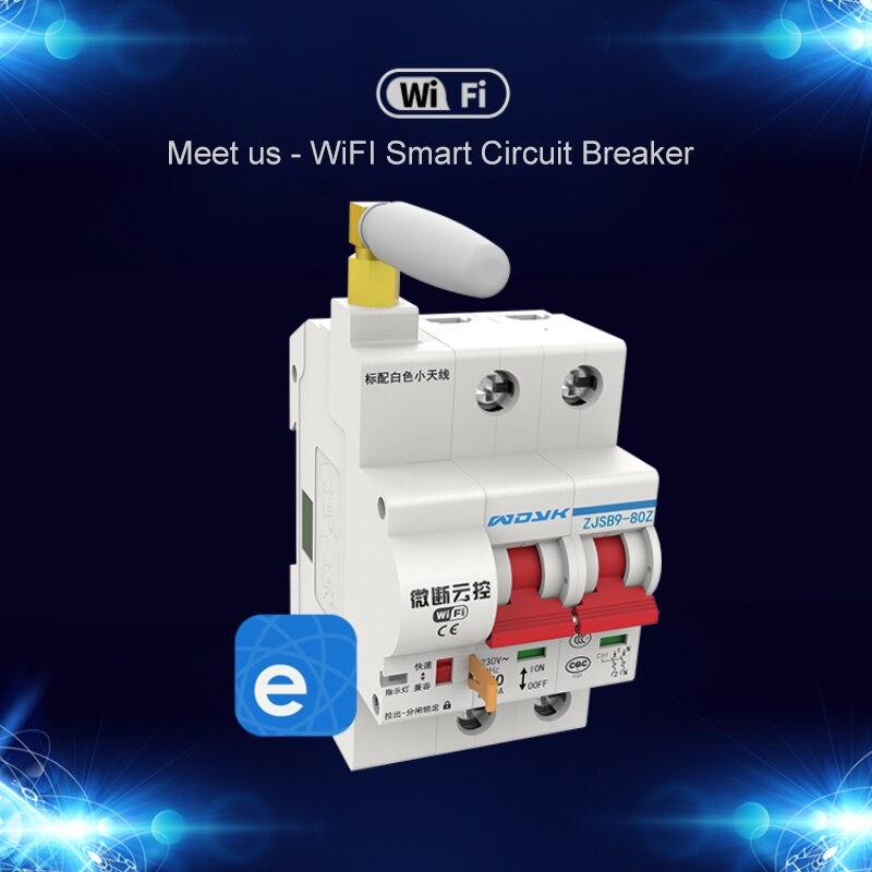 2P 16A/32A/80A/100A Smart home disjoncteur WiFi commutateur IoT App ewelink télécommande Support Amazon Alexa Google accueil