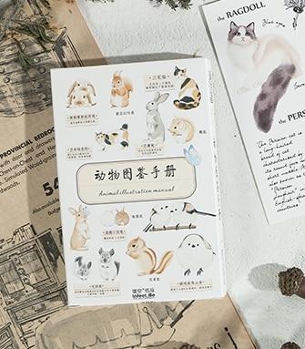 14.3cm*9.3cm Animal Picture Paper Postcard(1pack=30pieces)