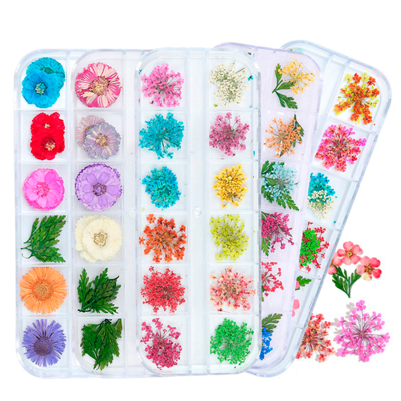 Dried Flowers Leaf Nail Decoration Natural Floral Sticker 3D Dry Beauty Nail Art Decals Jewelry UV Gel Polish Manicure TRFL-1