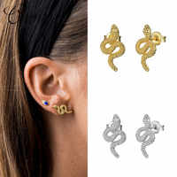 CANNER 100% 925 Sterling Silver Animal Snake Stud Earrings for Women Fashion Jewelry Punk Personalized Studs Earring Brincos
