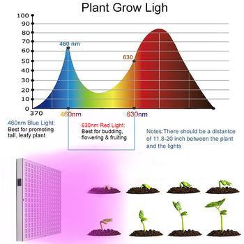 1000W oświetlenie LED do uprawy Full Spectrum 460-630nm Phytolamp dla roślin 225 leds lampa do uprawy rosną namiot do sadzonek i kwitnienia tanie i dobre opinie greensindoor CN (pochodzenie) ROHS C39199 12 2 inch Fitolamp LED Żarówki LED 85-265 v Lampy do hodowania roślin 3 Years