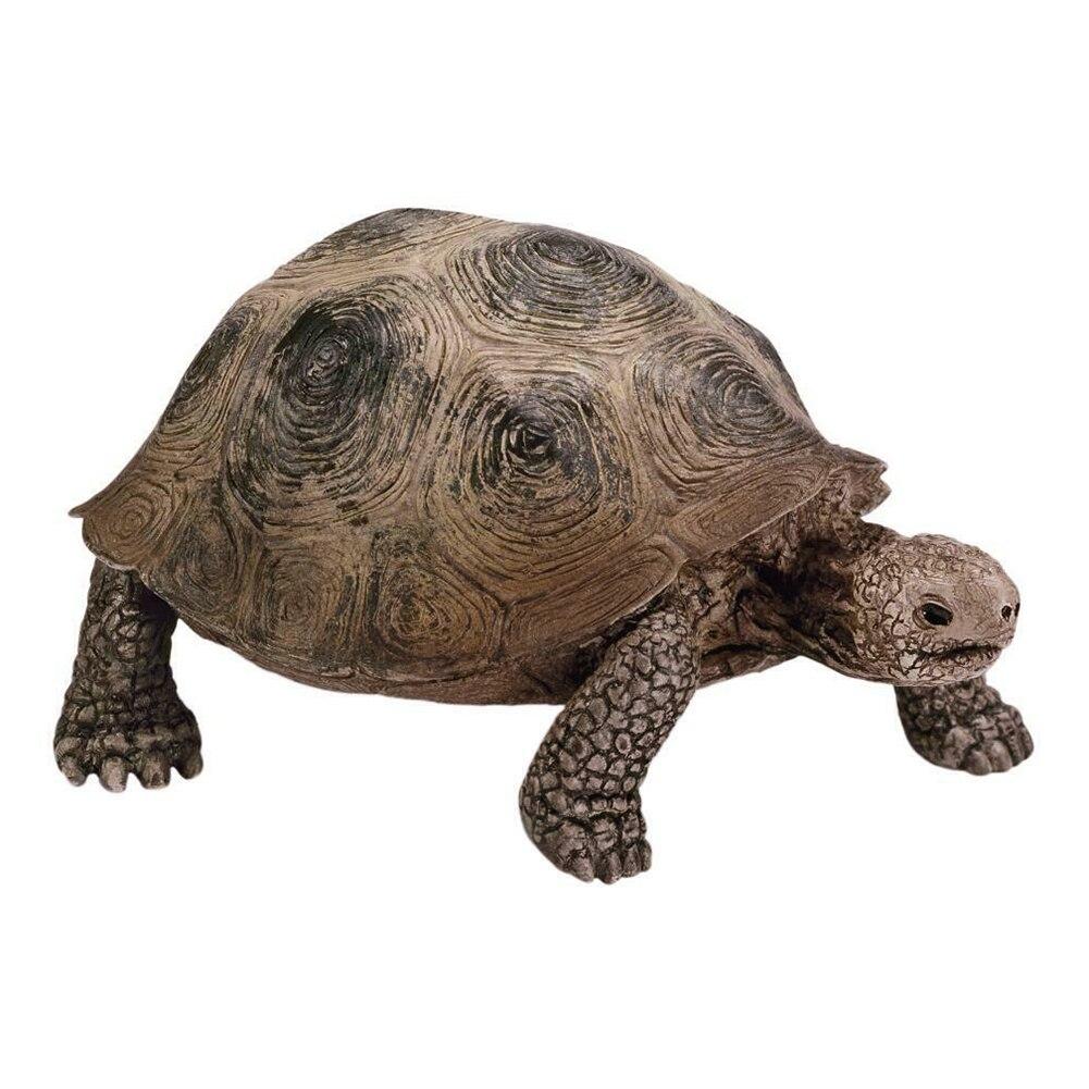 3,4 дюймов, гигантская черепаха, Дикая жизнь, животное, игрушка, черепаха, фигурка 14601, гигантская черепаха, Дикая жизнь, животные, черепаха, фи...