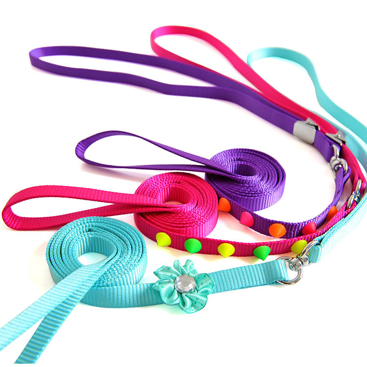 One-piece Beam Neck Set Fluorescent Colorful Dog Pet Traction Rope Chain
