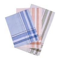 Etteggy men's handkerchief (set of 12 PCs) 45447l 1738