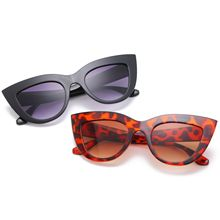 New European and American trend big box cat eye sun