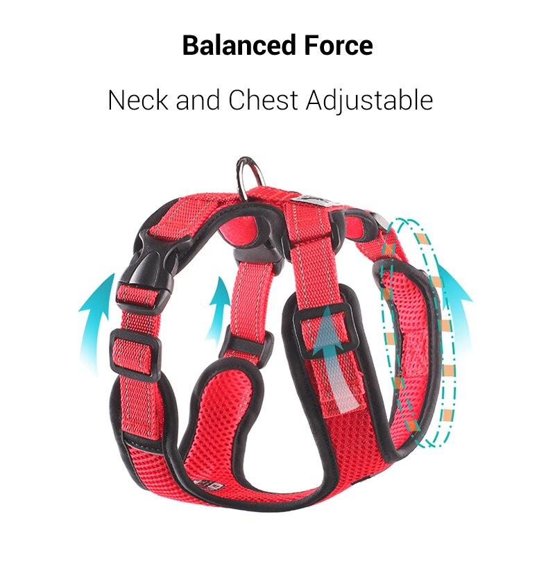 Dog Harness Vest (9)