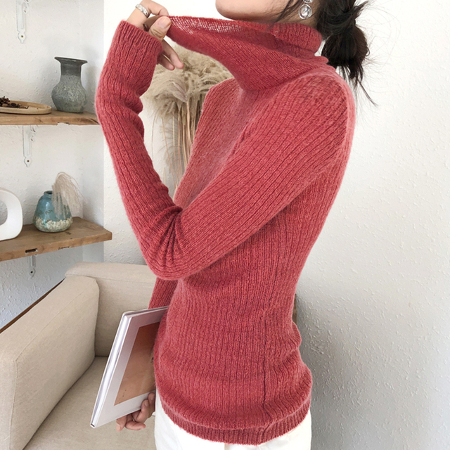 Ailegogo Spring Women Thin Turtleneck Sweater Casual Knitted Female Slim Fit Pullovers Korean Style Ladies Knitwear Tops 1