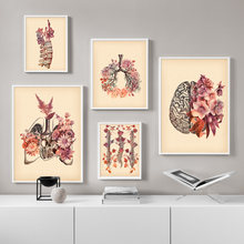 Vintage Lung Skull Spine Human Anatomy Medicine Wall Art Canvas Painting Nordic Posters And Prints Wall Pictures For Living Room(China)