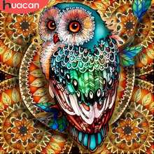 HUACAN Diamond Painting Full Square/Round Owl 5D DIY Embroidery Mosaic Picture Of Rhinestone Animal Christmas Decoration