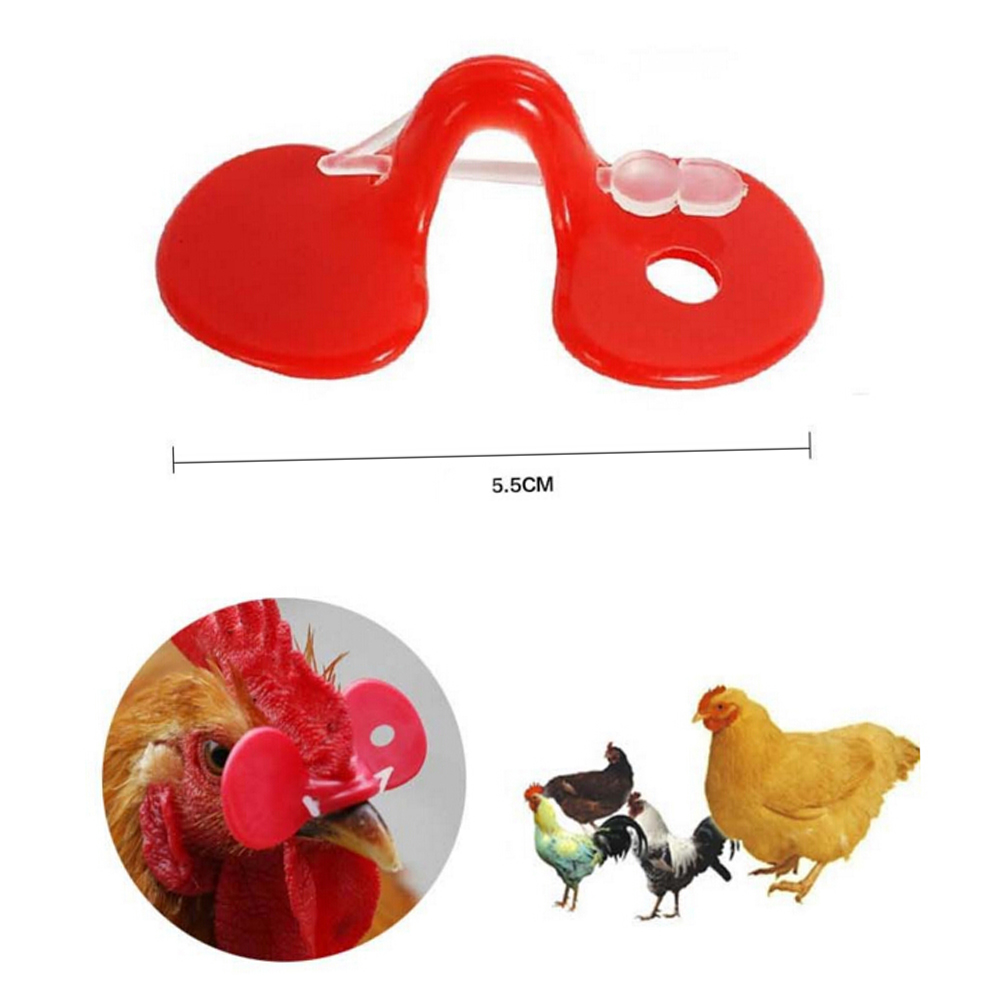 Chicken Eyes Glasses Livestock Farm Avoid Chicken Pecking Red Plastic Chicken Eyes Cover Wholesale 10pcs/lot