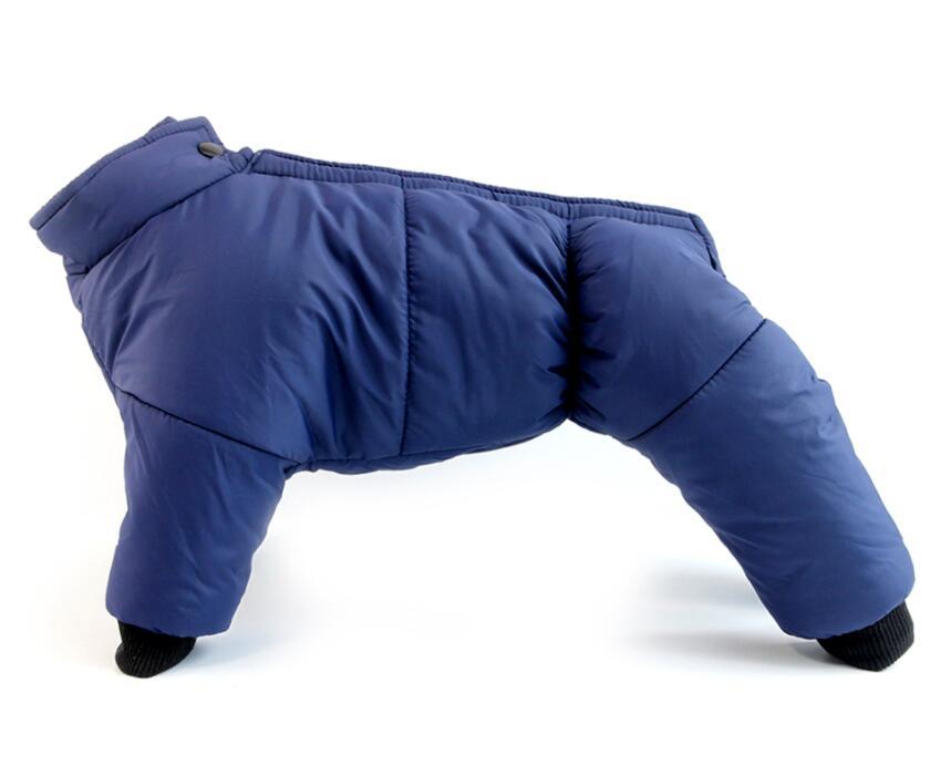 Köpek Yağmurluğu