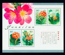 Clivia 2000-24M chine souvenir feuille poste timbres affranchissement Collection(China)
