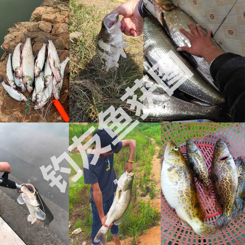 7/10/15/20g 3D EyesMetal Vib Blade Lure Sinking Vibration Baits Artificial Vibe for Bass Pike Perch Fishing 12 Colors 5