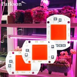 LED Grow COB Chip Full Spectrum LED Grow Light Phyto Lamp AC 110V 220V 10W 20W 30W 50W For Indoor Plant Light Seedling Grow Lamp