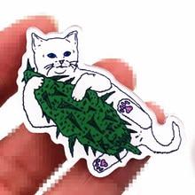 1 шт. брошь высокого качества для украшения одежды значки для рюкзака шапка забавный кот акриловый значок дизайн мультфильм Мода Pin