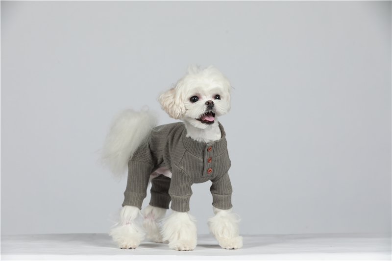 small puppy jumpsuit four legs (33)
