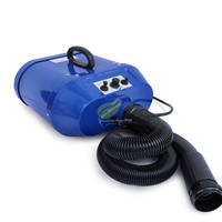 most Cheap Dog Grooming Dryer bs 2400 Pet Hair Dryer Blower 220V /2200W/ 70 db ALL Plug red/ Blue Color fast to russian