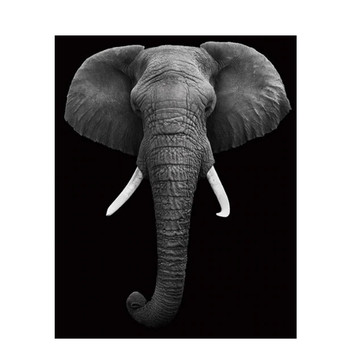 DIY Diamond Painting Cross Stitch Elephant 5D Diamond Embroidery animal Full Round/Square Mosaic Needlework Home decoration M735 image