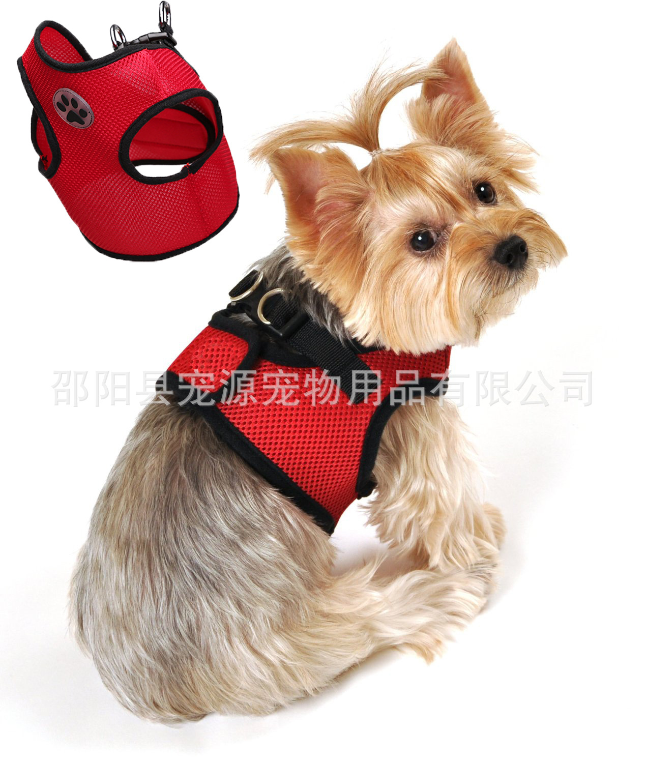 Hot Selling Pet Traction Cute Logo Dog Chest And Back With Comfortable Mesh Pet Clothes Fashion Pet's Chest-back