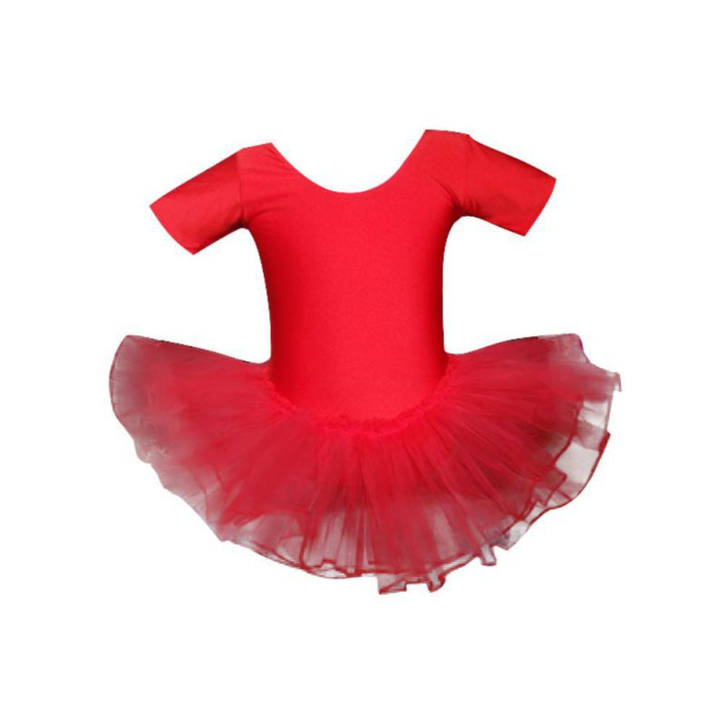 Children Girls Dance Ballet Dress Short Sleeve Mesh Tutu Practice Show Clothes Small Swan Dancewear Ballet Dress