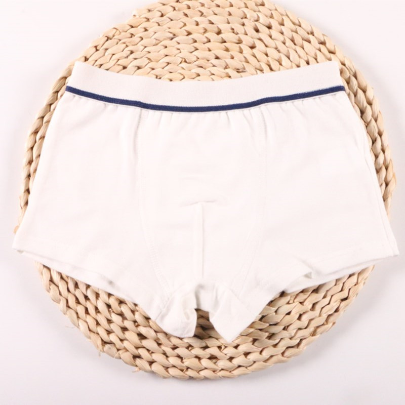 2Pcs/Lot Boys Underwear Pure Color Kids Shorts Panties Cotton Baby Children Boxer for Teenager Underpants 2-10Y 6
