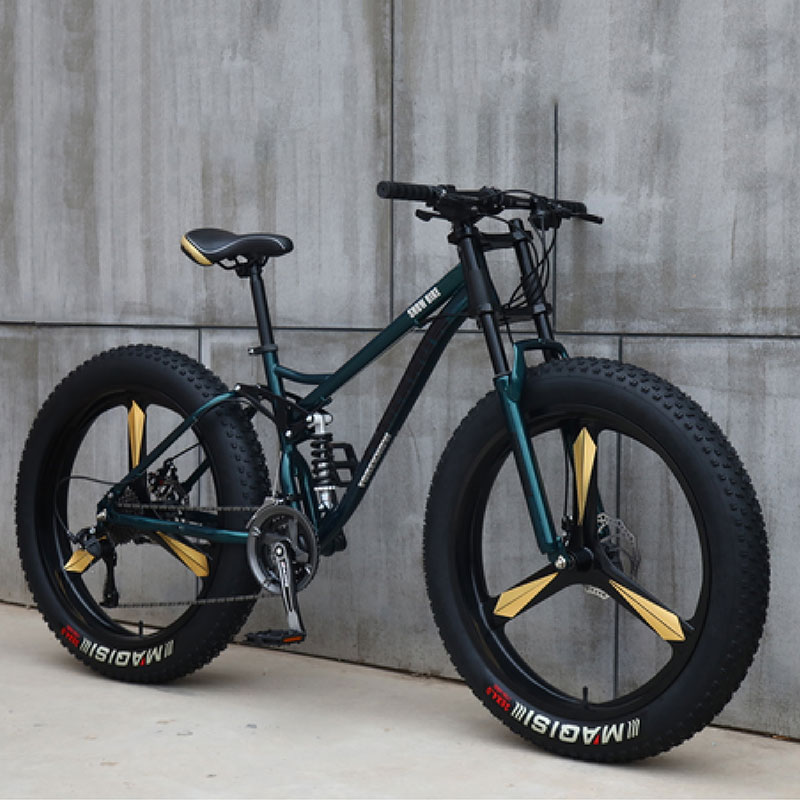 Sports Cycling Bicycle Speed Off Road Beach Mountain Bike Adult Super Wide Tires Men and Women Cycling Students|Bicycle| |  - title=