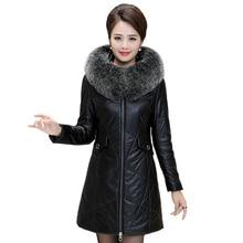 Female Jacket Collar Size