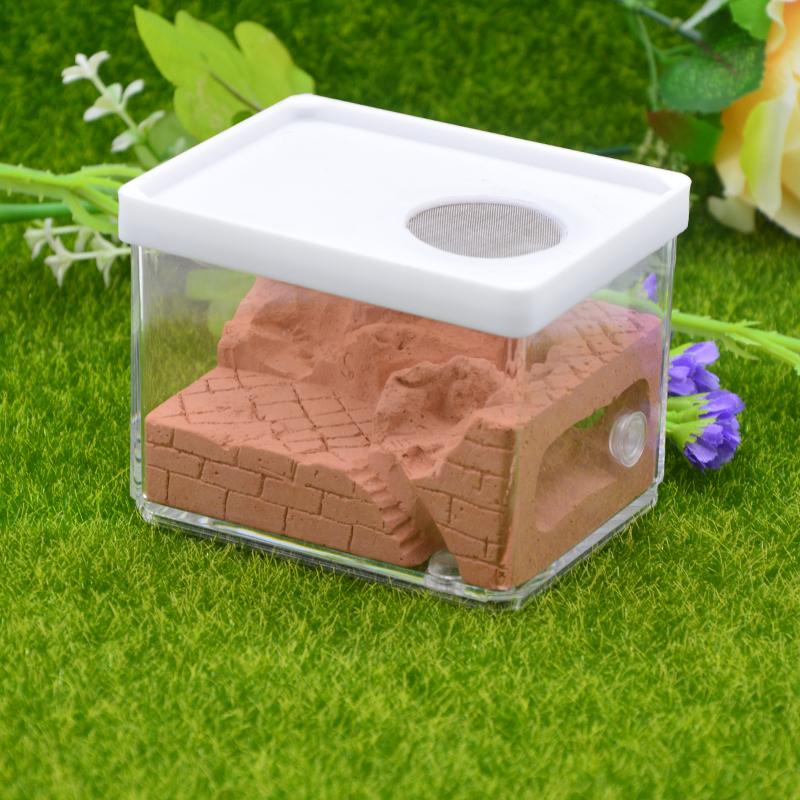 New Ecological Plaster Ant Farm square Nest Landscaping Ant House Ant Nest Workshop Pet Anthill Insect Box  10.3*7.6*7.5cm