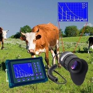 Image 3 - V770 0.39 Inch 800X600 OLED Displayer Ống Kính 21Mm Kính Mắt Camera Đầu Mountable Mũ Bảo Hiểm Ban Đêm Tầm Nhìn Đầu Ghi Hình Camera