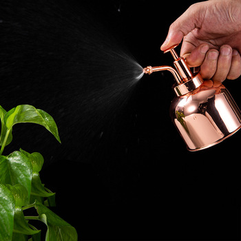 Retro Mini Stainless Steel Watering Can Plants Succulents Pot Home Office Potted Plant Garden Tool