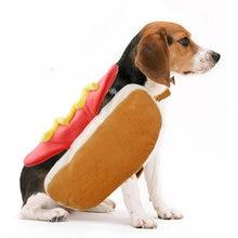 1 шт собака с переплетенными ремешками; Популярная красивая