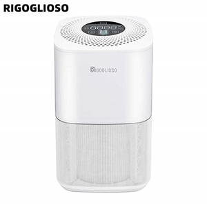 Image 1 - RIGOGLIOSO air cleaner TURE HEPA air purifier 4speed adjustment eco purificateur air hepa screen display air filter high quality