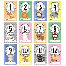 12 Sheet Milestone Photo Sharing Cards Gift Set Baby Age Cards - Baby Milestone Cards, Baby Photo Cards - Newborn Photo
