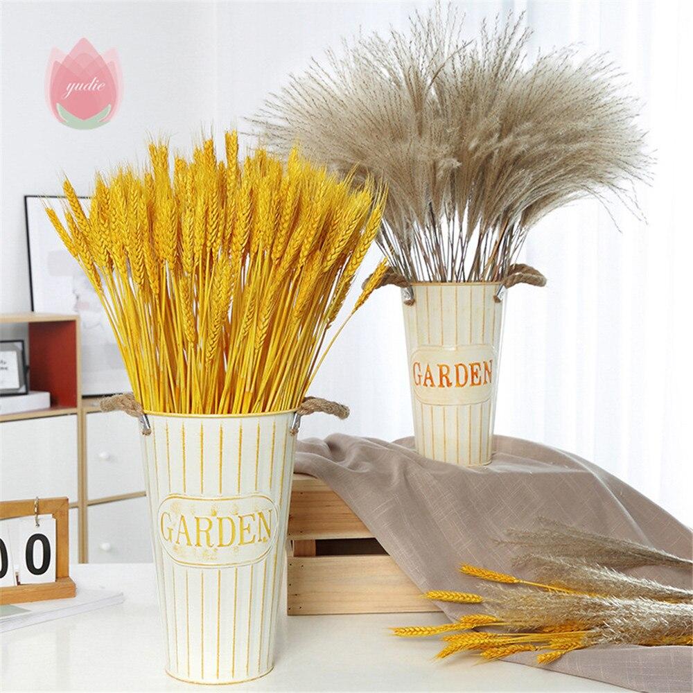 Камыш натуральный высушенный маленький пампасной травы Phragmites искусственные настоящий цветок пшеницы для Свадебная вечеринка для рукодели...
